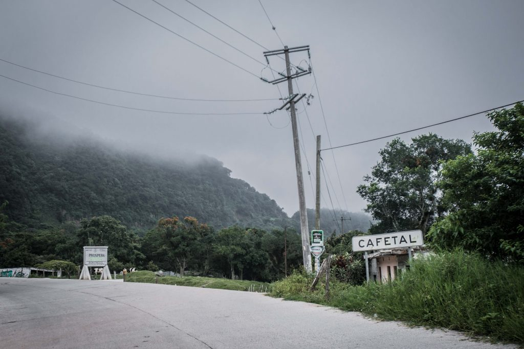 Otro de los factores que ayudan al crecimiento del café en esta región es la altura elevada en la cual crece y la cercanía de los terrenos donde lo hace con el mar.
