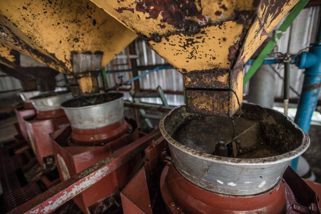 Una vez que recolectan suficientes granos, los cafeticultores llevan su cosecha a plantas procesadoras donde comienza el proceso que les permite extraer los preciados granos de café que sustentan su economía.