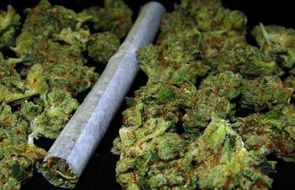 marihuana 420