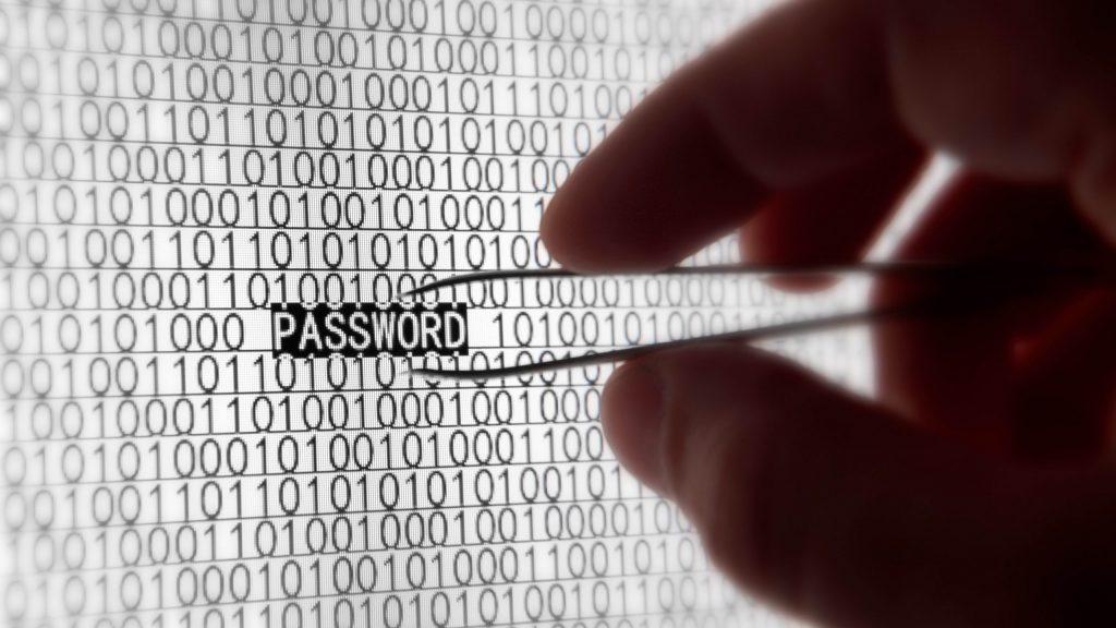 Contraseña password