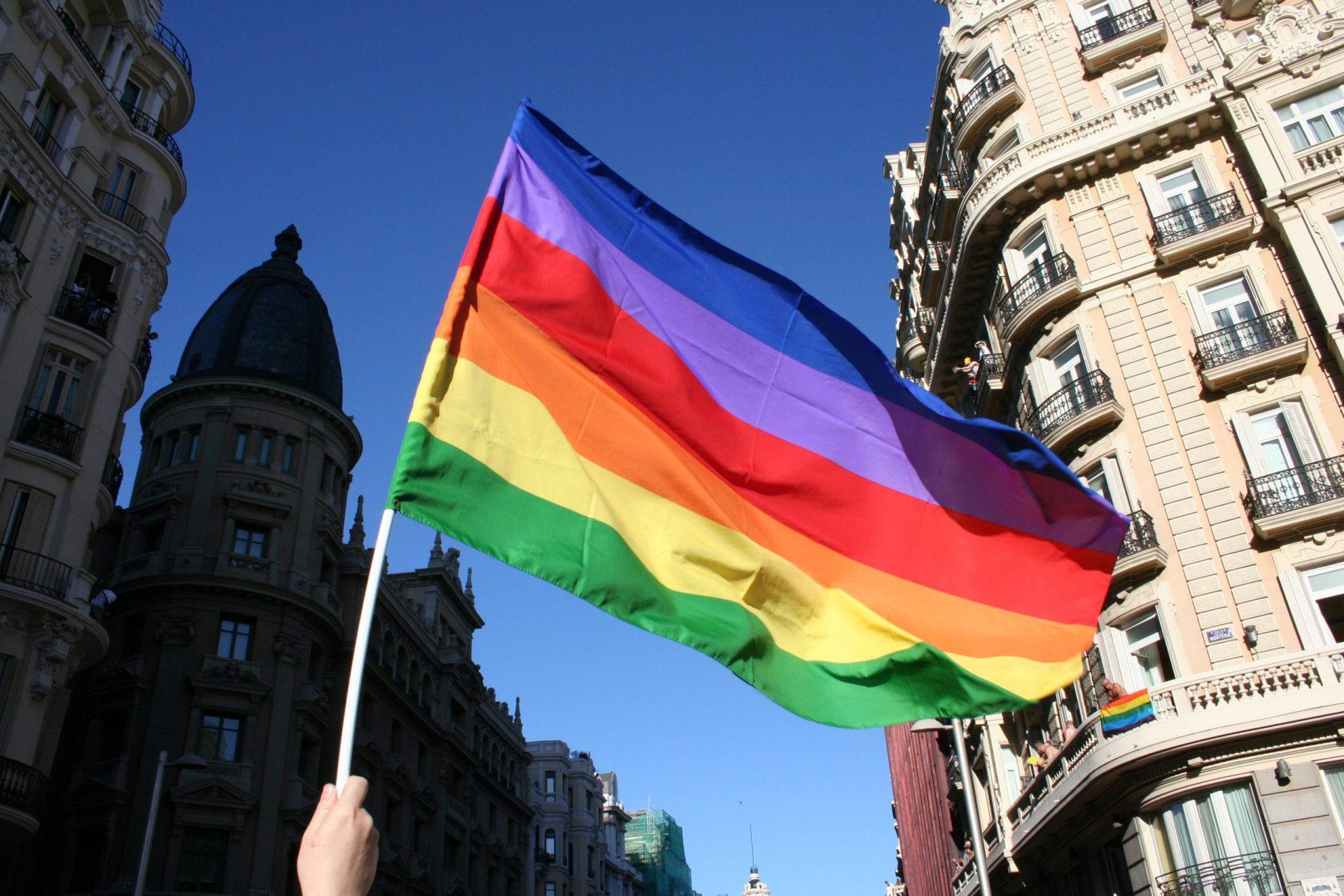 Marcha orgullo LGBT+ día del orgullo gay