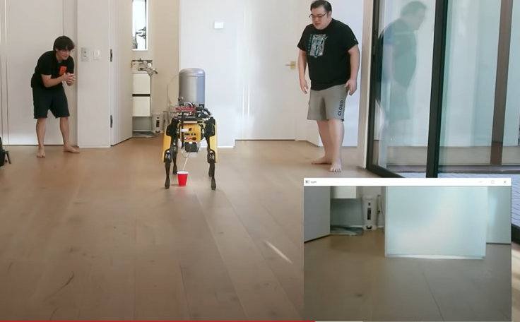 un perro robot